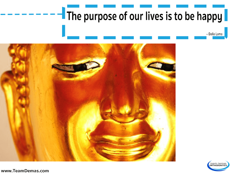 The purpose of our lives is to be happy – Dalai Lama